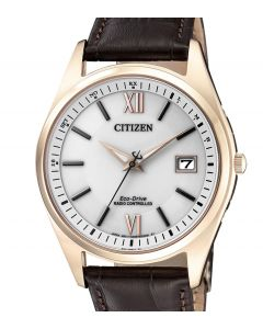 Citizen Herren Funkuhr AS2053-11A